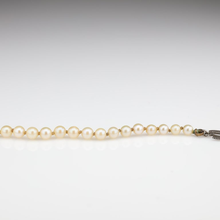 Mikimoto Original Strand of First Viable Cultured Pearls, circa 1920s For Sale 8
