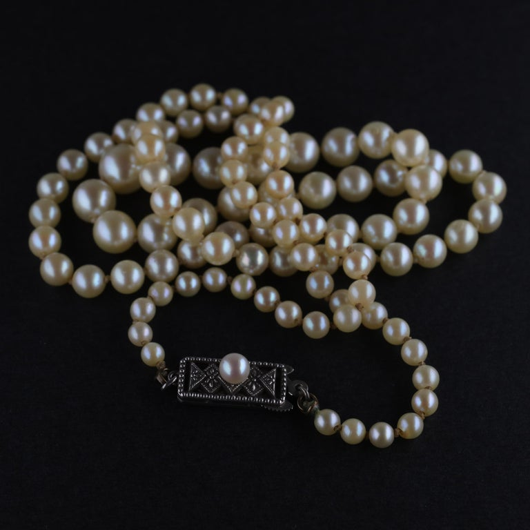 Mikimoto Original Strand of First Viable Cultured Pearls, circa 1920s For Sale 11