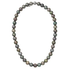 Mikimoto South Sea Pearl Necklace with White Gold Clasp