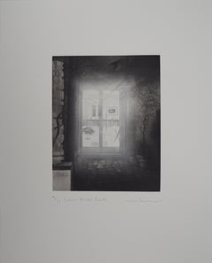 Entrance of the Gallery - Original handsigned etching / 90ex