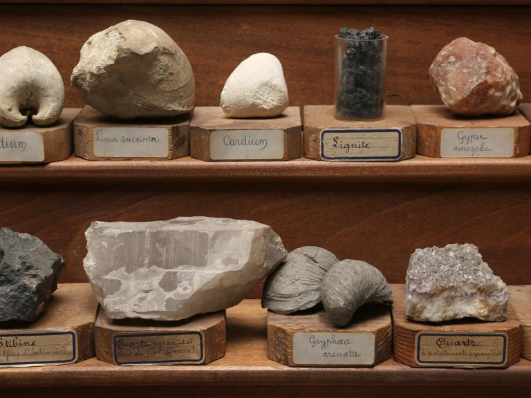 Mineral Specimen Collection, from a circa 1891 School in France For Sale 4