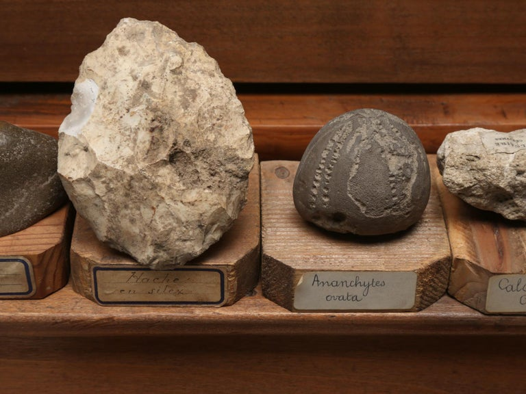 Mineral Specimen Collection, from a circa 1891 School in France For Sale 6