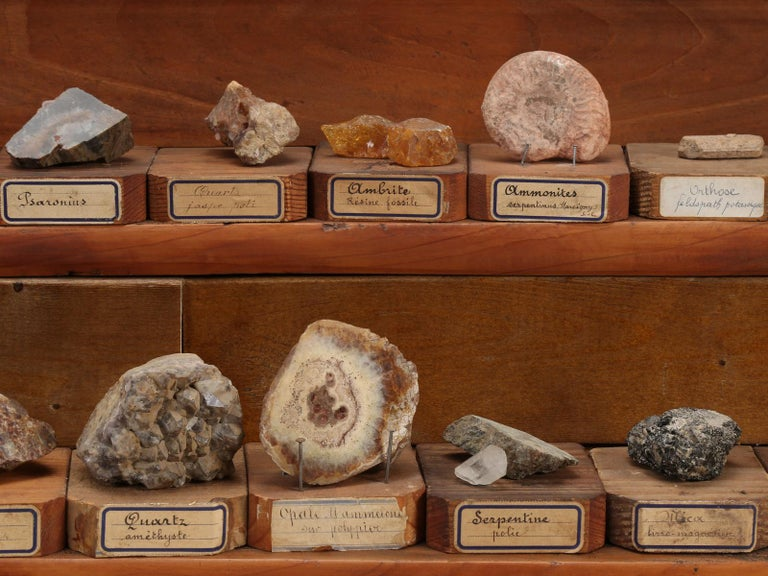 Mineral Specimen Collection, from a circa 1891 School in France For Sale 7