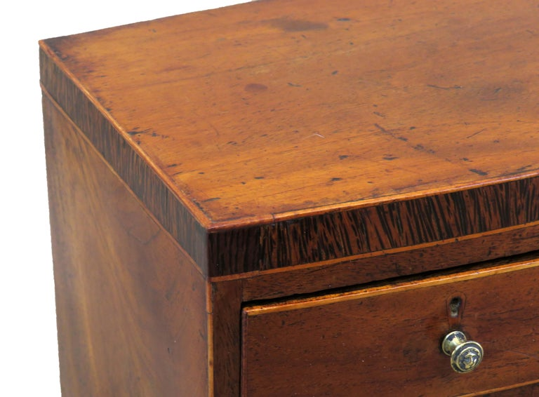 A very attractive mid-19th century mahogany Miniature bowfronted chest with well figured Top and crossbanded decoration over two short And three long drawers having replaced brass Knobs over elegant original splay feet  (There is often a