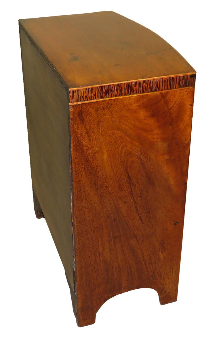 English Miniature 19th Century Mahogany Bowfronted Chest For Sale