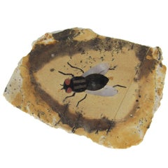 Miniature Italian Pietra Dura Fly Plaque