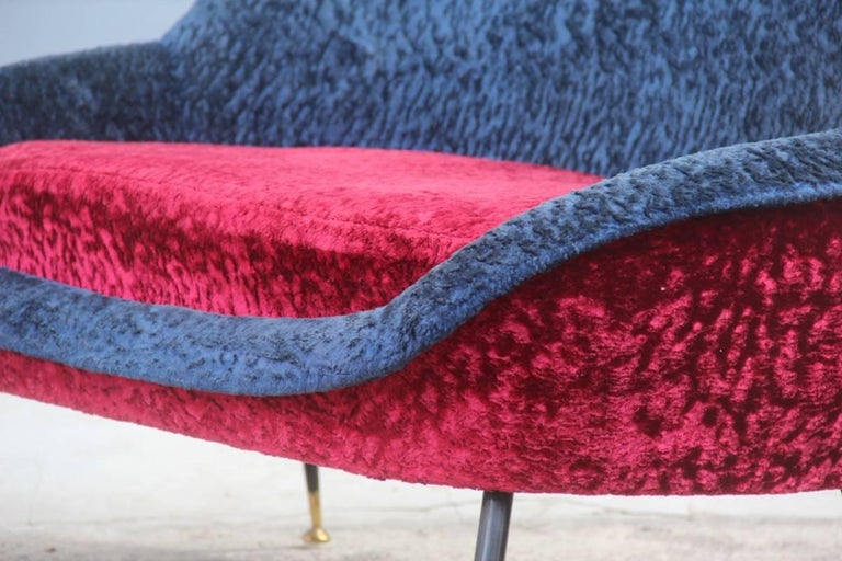 Mid-Century Modern Italian Sofa 1950s Design Minotti Gigi Radice Blu Red Color  For Sale 2