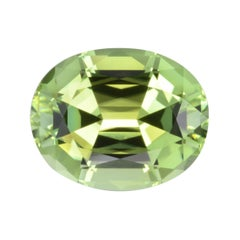 Mint Green Tourmaline Ring Gem 7.84 Carat Oval Loose Gemstone Loupe Clean