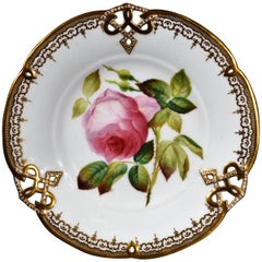 Minton Bone China Porcelain Botanical Specimen Plate of a Rose, Pattern #9762