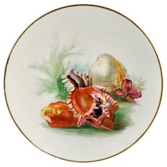 Minton Porcelain Plate, Sea Shells by W. Mussill, Victorian, 1891