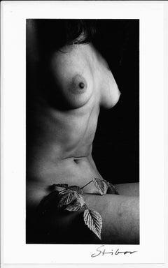 Nude Photography by Miroslav Stibor with original signature, circa 1960s 1970s