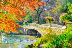 Autumn Colors Bow Bridge with Flower Pots and Ducks in  Central Park