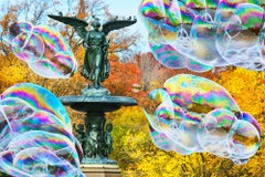Big Bubbles and the Bethesda Fountain.