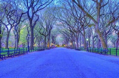 Central Park in Blue
