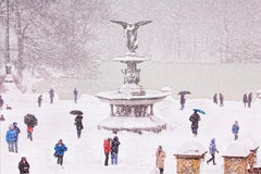 Central Park in Snow Bethesda Fountain with Monochromatic Color Scheme