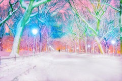 Central Park Pink Dawn In Snowstorm, New York City