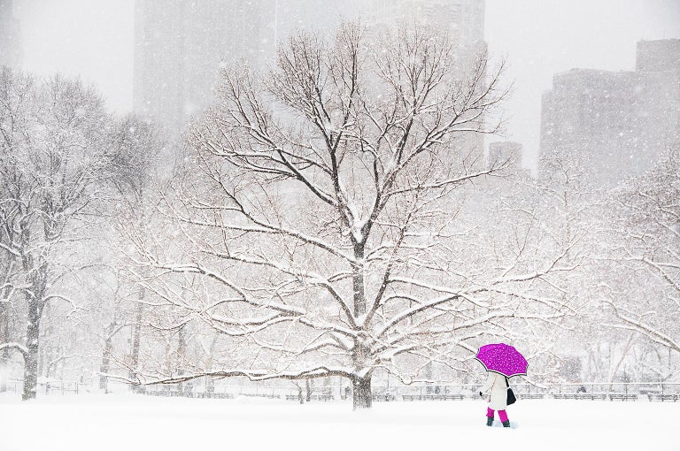 Mitchell Funk Landscape Photograph - Central Park: Umbrella in the snow