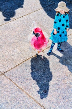 Funky Red Chicken and Girl with Dreamy Blue Dress