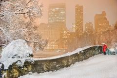 Gapstow Bridge Central Park In Snowstorm