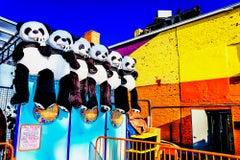 Panda Pandemonium Coney Island Teddy Bear