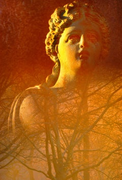 Statue in Central Park With Golden Late Afternoon Light