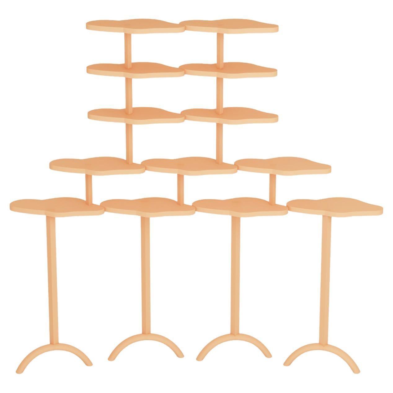 Modern Asir Shelves by Rejo Studio