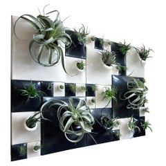 Modern Ceramic Greenwall Configuration, Living Wall, USA Pandemic Design Studio