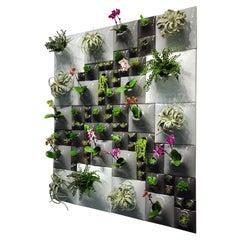 Modern Ceramic Greenwall, Living Wall, USA Pandemic Design Studio