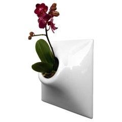 Modern Ceramic Wall Planter, Greenwall Living Wall, Pandemic Design Studio