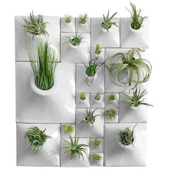 Modern Ceramic Wall Planter Set, Greenwall, USA Pandemic Design Studio