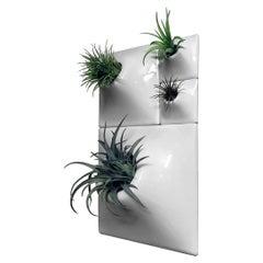 Modern Ceramic Wall Planter Set of 4, Greenwall, USA Pandemic Design Studio