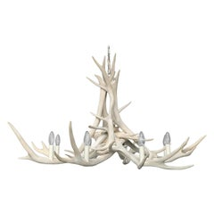Modern Chandelier Made of Bleached Red Stag Antlers