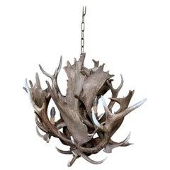 Modern Chandelier Made of Fallow deer Antlers