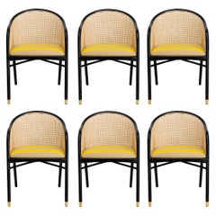 Modern Dining Chairs Set of 6, Black Lacquer/Natural Cane