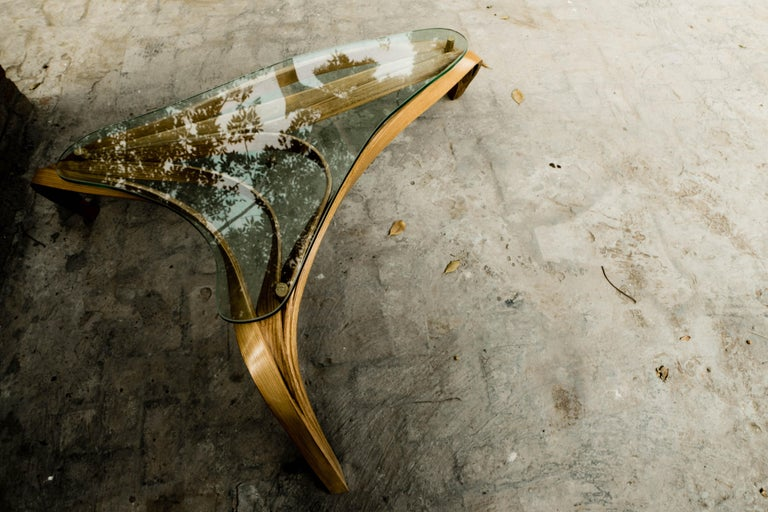 Hand-Crafted Modern Medium Bent Wood Coffee Table with Safety Glass Top by Raka Studio For Sale