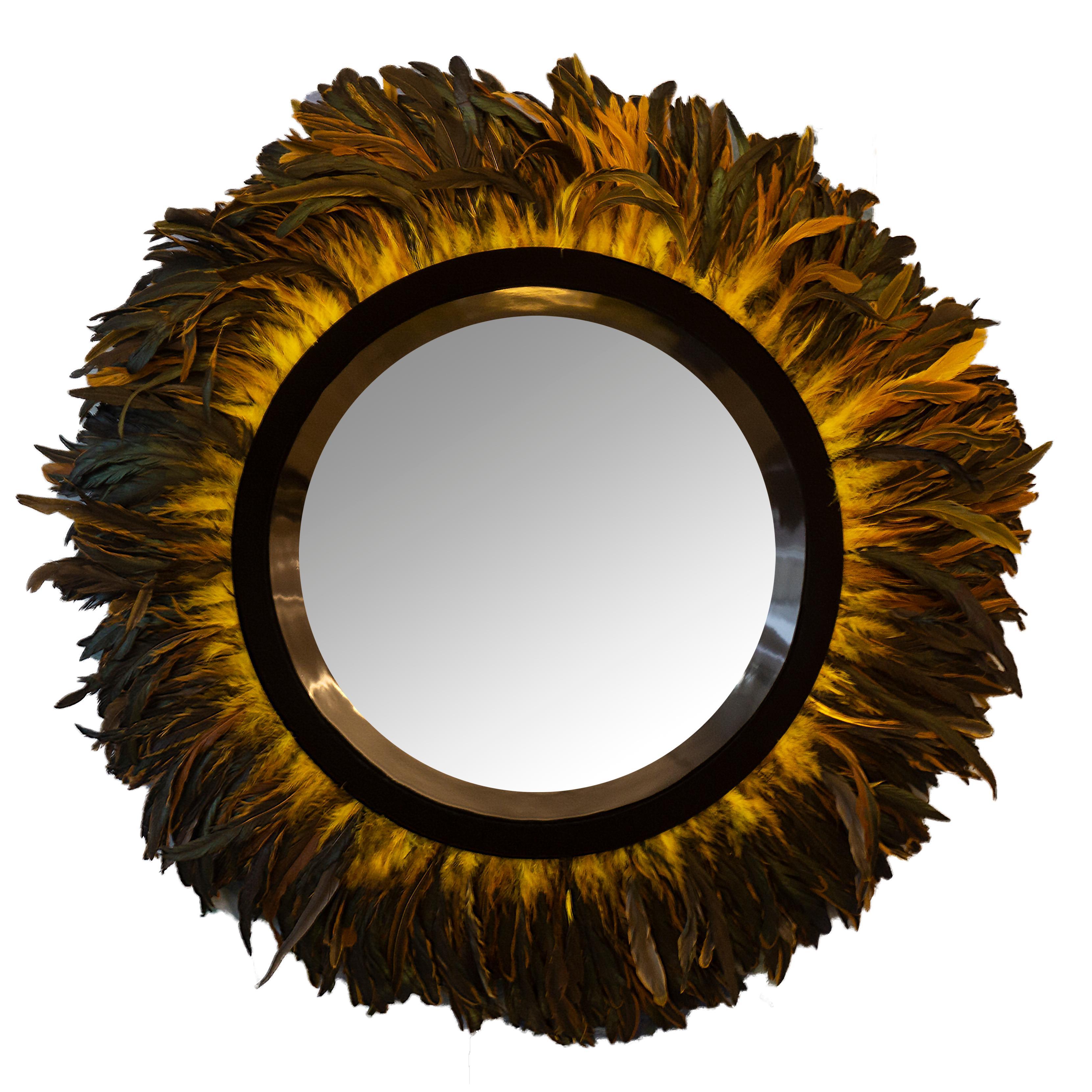 Modern Mirror with Coque Feather Trim