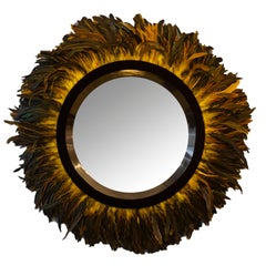 Modern Mirror with Coque Feather Trim