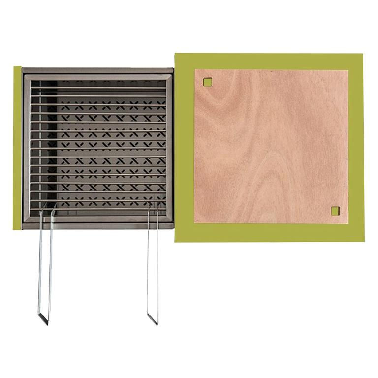 Modern Outdoor Charcoal Barbecue with Sliding Grills, Snail Mono Vision Green