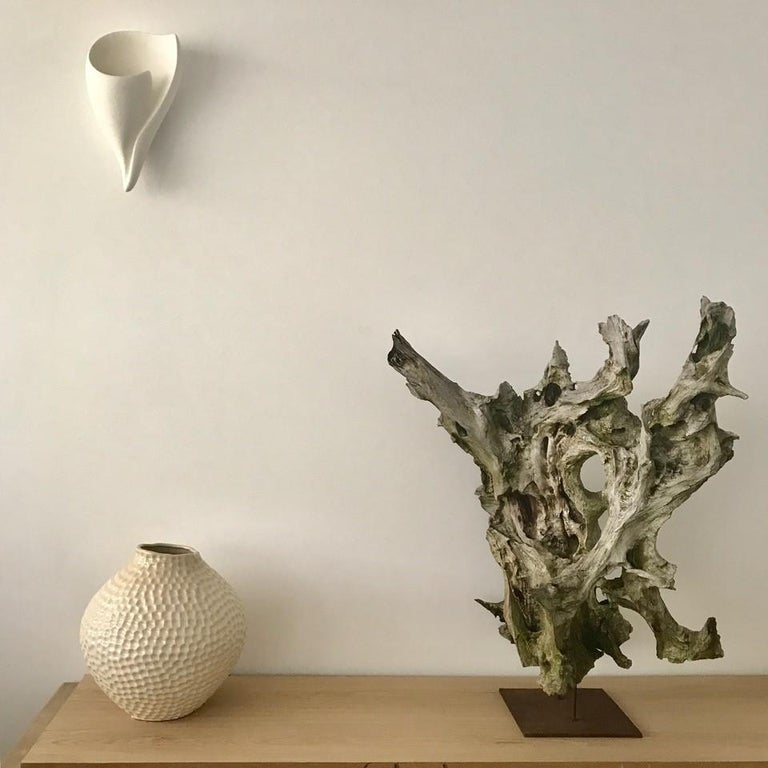 Organic Modern Shell Wall Light/Wall Sconce in White Plaster by Hannah Woodhouse For Sale 2
