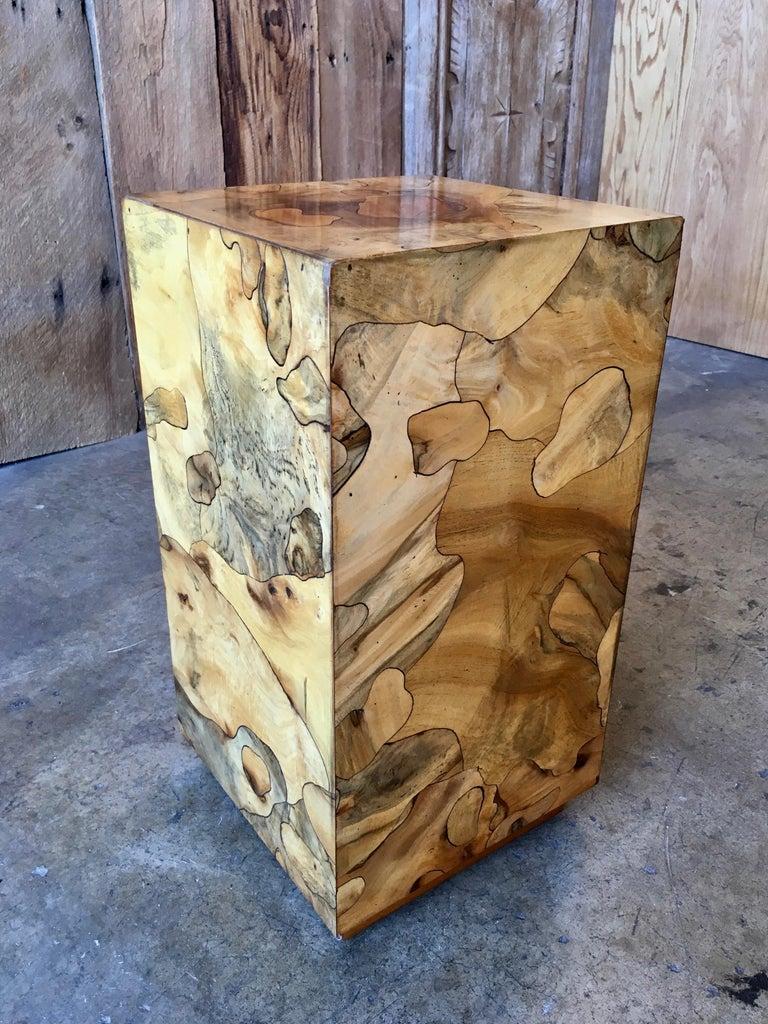 Mid-Century Modern Modernist Burl Wood Pedestal For Sale