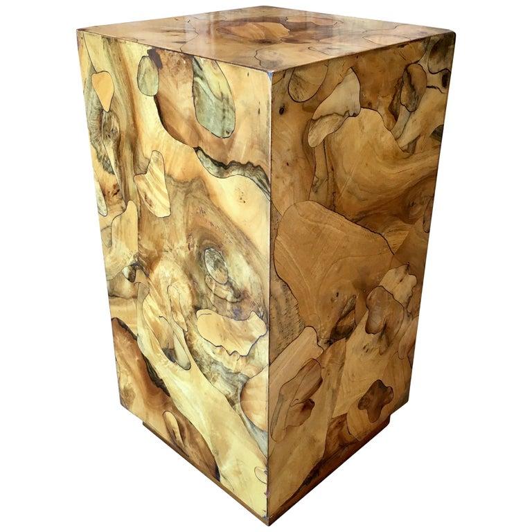 Modernist Burl Wood Pedestal For Sale