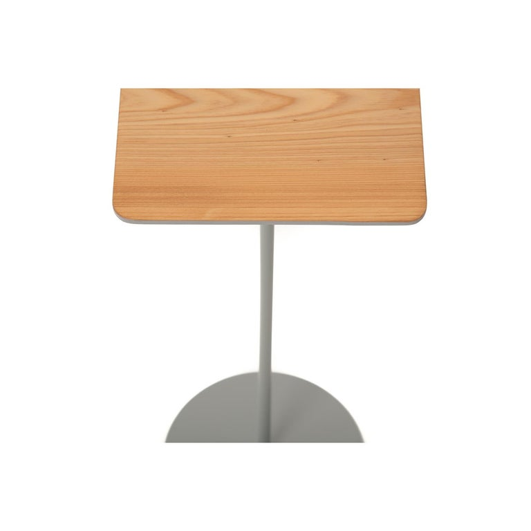 Organic Modern Modernist Cocktail Table For Sale
