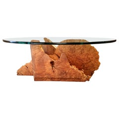 Modernist Sculpted Burl Wood Coffee Table