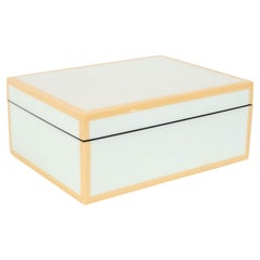 Modernist Square Lacquered Rectangular Box in Pale Celadon with Tan Accents