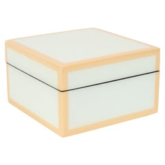 Modernist Square Lacquered Square Box in Pale Celadon with Tan Accents