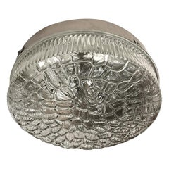 Molded Glass Light Flushmount Fixture