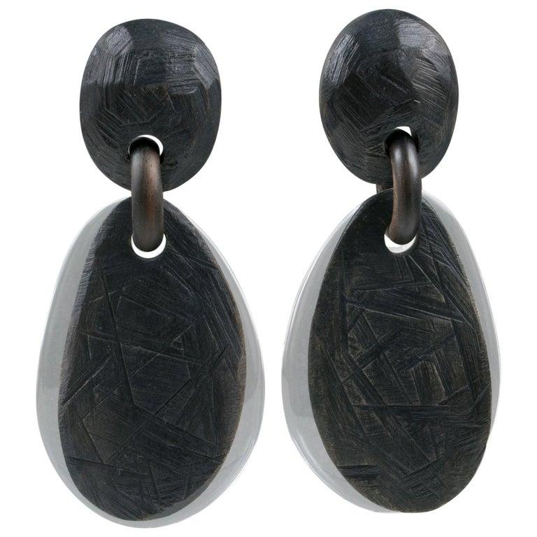 Monies Dangle Oversized Clip Earrings Acrylic and Ebony Wood For Sale