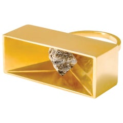 Monique Péan 3.39 Carat Grey Rough Diamond Vessel Ring, 18 Carat Yellow Gold