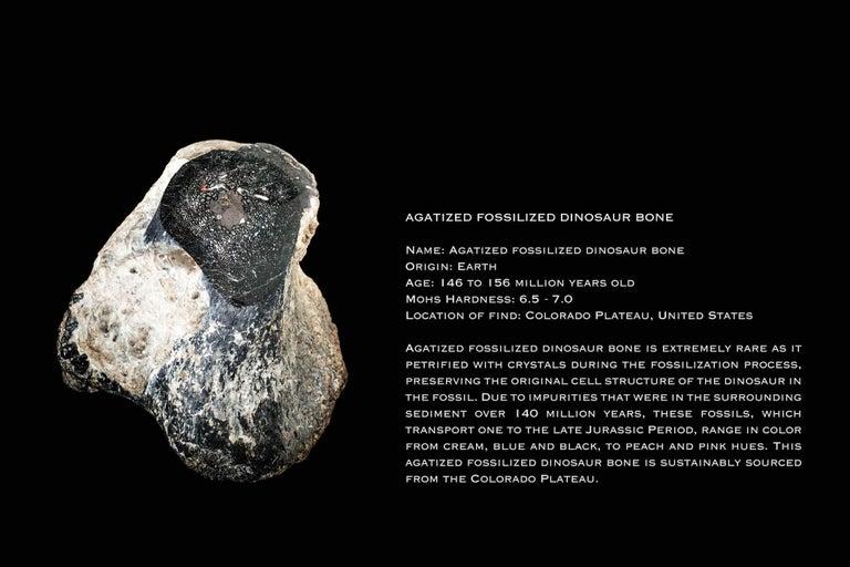 Monique Péan Black Fossilized Dinosaur Bone and Diamond Ring 18 Carat White Gold For Sale 1