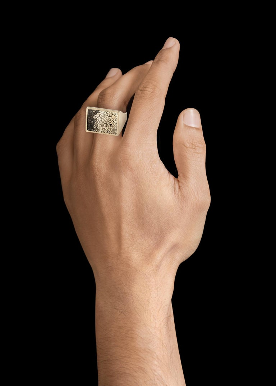Monique Péan Pyritized Dinosaur Bone Ring, 18 Carat Recycled White Gold 1
